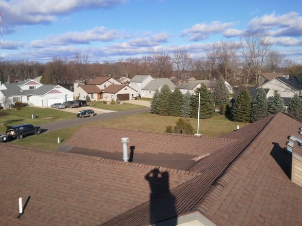 Affordable-Tree-Removal-Service-in-Walker-MI